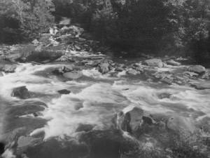 Rocky Mountain Stream with White Water by Bayard Wootten