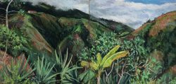 Cloud Forest at La Florida, Ecuador by Elsie Dinsmore Popkin (1937-2005)