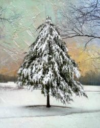 A Christmassy Snowfall by Watson  Brown