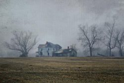 A Dark Winter Fog in the Countryside by Watson  Brown