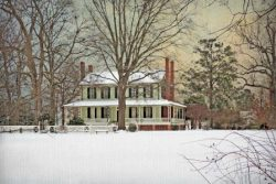 A Peaceful Snowfall at the Grove by Watson  Brown