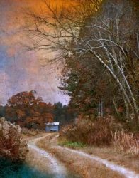 An Eastern Carolina Autumn by Watson  Brown