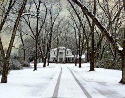 An Eastern Carolina Snowfall by Watson  Brown