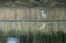 Heron at Lees Cut by David Addison