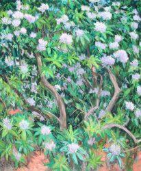 Reynolda Rhododendron Triptych Panel B by Elsie Dinsmore Popkin