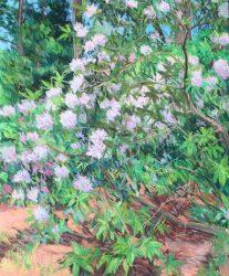 Reynolda Rhododendron Triptych Panel A by Elsie Dinsmore Popkin