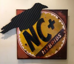 NC Former State Bird: Jim Crow by Susan Harb
