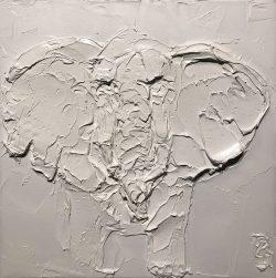 Elephant by Brooke Major