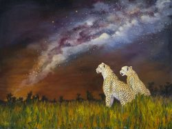 Stargazing by Lee Mims