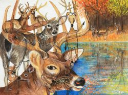 Deer with Cartoon by Trena McNabb