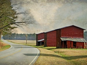 Three Red Tobacco Barns in a Row by Watson Brown