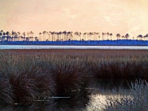 Sunset Over Hobucken Marsh by Watson  Brown