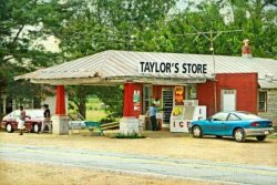 Taylor's Store by Watson  Brown