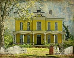 The Goldsboro Yellow House by Watson  Brown