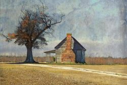 The Old Plantation Kitchen by Watson  Brown