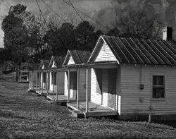 Wilson Shotgun Houses by Watson Brown