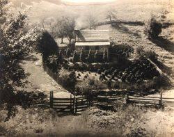 Ms. John McElrath's Near Bryson City by Bayard Wootten (1875-1959)
