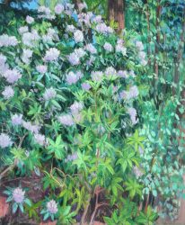 Reynolda Rhododendron Triptych Panel C by Elsie Dinsmore Popkin